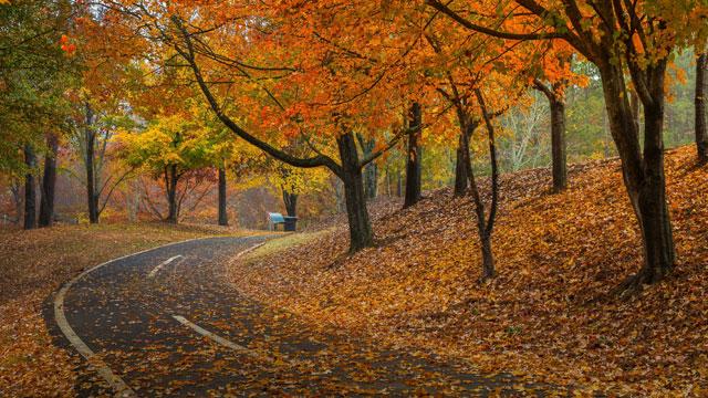 2020-northeast-adventure-fall-colors-road-02-640x360